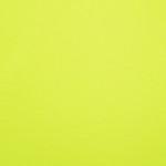 MA: 19 - Neon Lemon