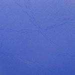 24172 PVC: 06 - Blue