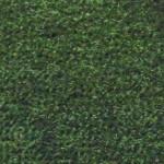 6001: 07 - Green