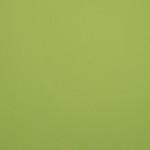 EOL / SF: Bright Green Suede (0701984)