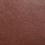 EOL / SF: Brown (0802087)