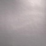 EOL / SF: Grey Shiny (0901007)