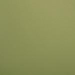 EOL / SF: Light Green Grained (0803925)