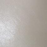EOL / SF: Shiny Cream (0801159)