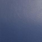 WM2012: 08 - Blue