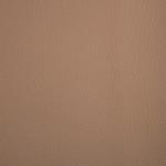 WM50 Lionella: 02 - Bourbon: Camel