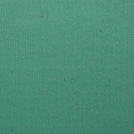 WM316 Canvas: 08 - Light Green