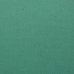 WM316 Canvas: 08 - Light Green