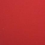 WM316 Canvas: 07 - Red