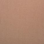 WM316 Canvas: 03 - Tan