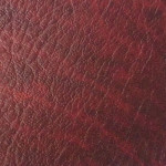 Chieftain: 09 - Universal: Logan Red